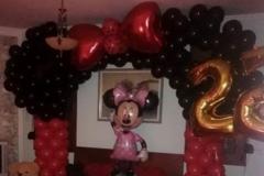Καμάρα Minnie