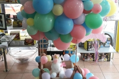 Αερόστατο Organic