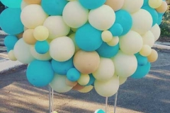 Αερόστατο από Μπαλόνια Organic!