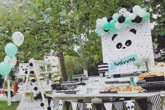 Καμάρα Organic Panda