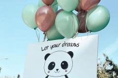 Μπαλόνια για Θέμα Πάντα