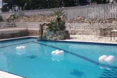 Μαργαρίτες σε πισίνα με LED
